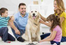 family_dog