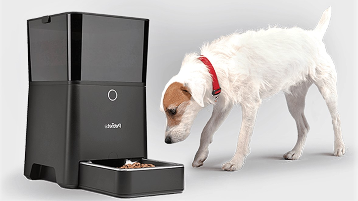 best pet automatic feeders
