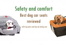 Best dog car booster seats