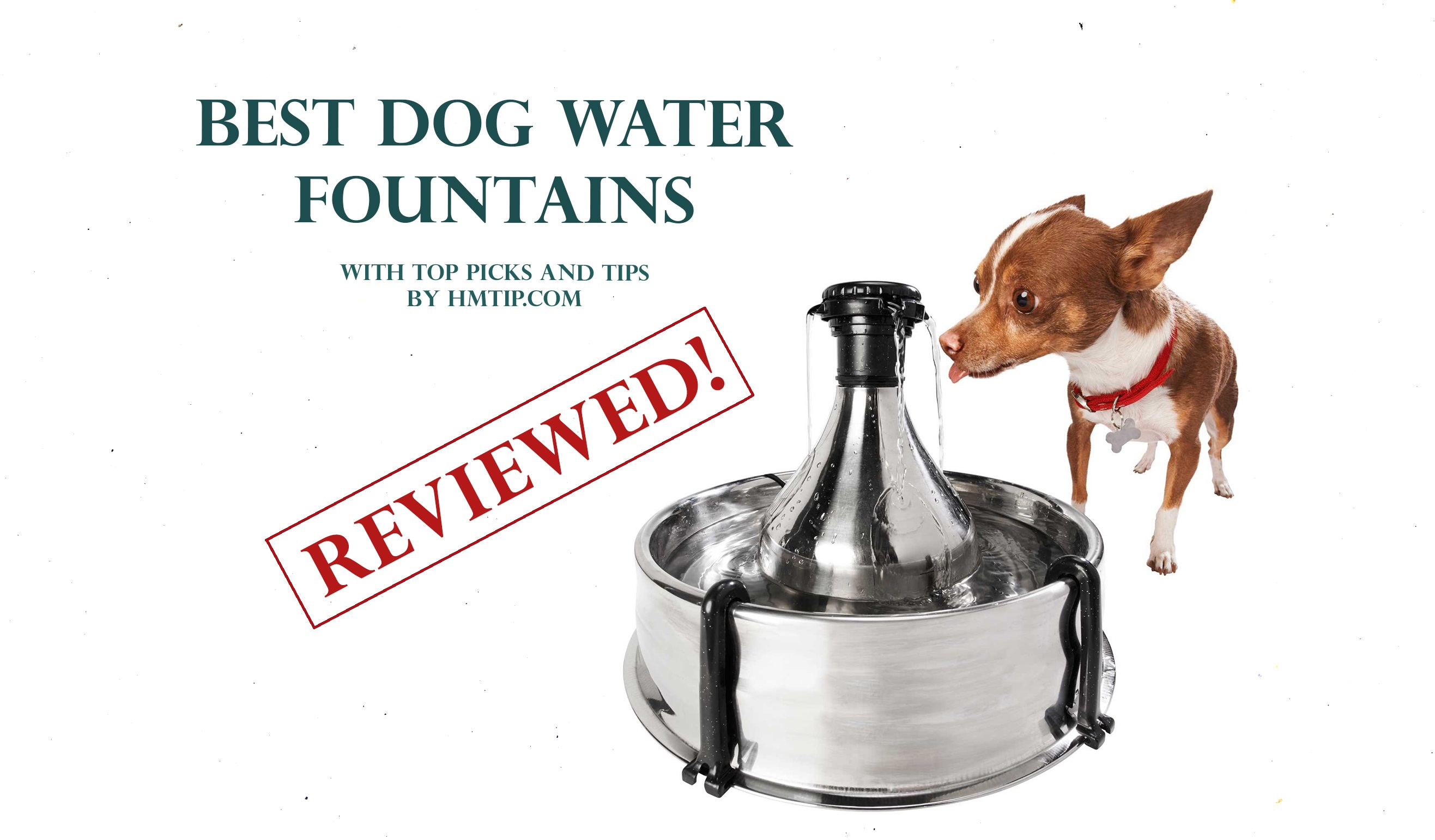 Top dog water fountains