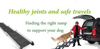 est dog ramps for cars and beds