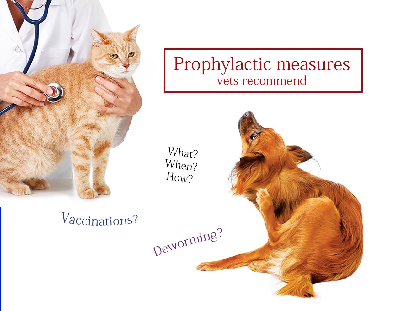 Prophylactic measures for pets